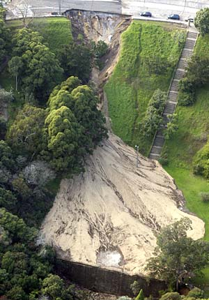 Cooper Park below burst water main in Bellevue Hill