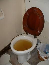 Blocked WC